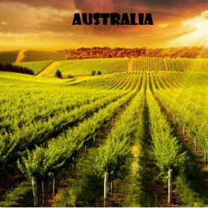 Australia- vino-naturale-vino-artigianale-wine-boxes-freeshipping