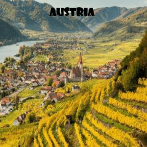 austria-vino-naturale-vino-artigianale-wine-boxes-freeshipping