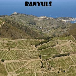 banyulsPercorso, blind box, Italia, vino naturale, vino artigianale, wine boxes, vino biodinamico, vino biologico, sustainability, freeshipping