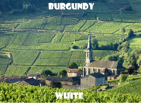 Borgogna-vino-naturale-vino-artigianale-wine-boxes-freeshipping