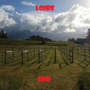 loira-vino-naturale-vino-artigianale-wine-boxes-freeshipping