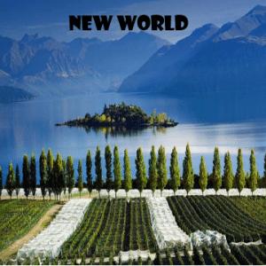 New-World-vino-naturale-vino-artigianale-wine-boxes-freeshipping