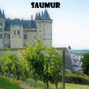 saumur-vino-naturale-vino-artigianale-wine-boxes-freeshipping