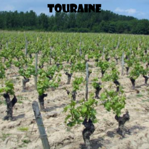 Touraine-vino-naturale-vino-artigianale-wine-boxes-freeshipping