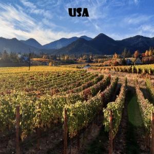 Usa- vino-naturale-vino-artigianale-wine-boxes-freeshipping