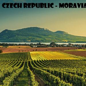 moravia-vino-naturale-vino-artigianale-wine-boxes-freeshipping