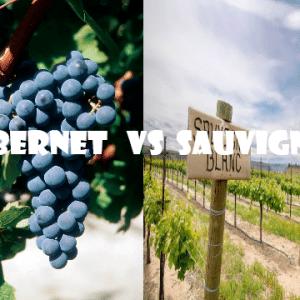 Cab- Sau-vino-naturale-vino-artigianale-wine-boxes-freeshipping