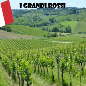 grandi-rossi-vino-naturale-vino-artigianale-wine-boxes-freeshipping