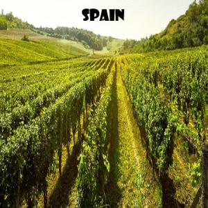 Spagna-vino-naturale-vino-artigianale-wine-boxes-freeshipping
