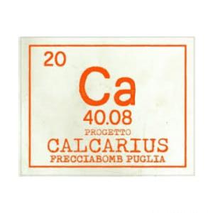 Calcarius